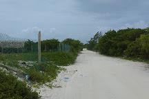 Isla Blanca, Cancun, Mexico