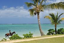 Haras Du Morne, Le Morne, Mauritius