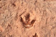 Dinosaur Tracks, Tuba City, United States
