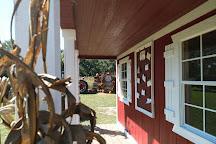 Coon Hollo Farm, Micanopy, United States