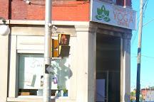 Upward Dog Yoga Centre, Ottawa, Canada