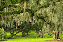 Jungle Gardens, Avery Island, United States