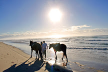 Tassiriki Ranch Beach Horse Riding & Holiday Cabins, Ballina, Australia