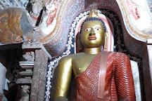 Wicky Tours, Negombo, Sri Lanka