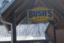 Bush's Visitor Center, Chestnut Hill, United States