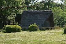 Hamamatsu City Shijimizuka Park, Hamamatsu, Japan