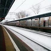 Железнодорожная станция  Likhobory