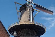 Molen Aeolus, Vlaardingen, The Netherlands