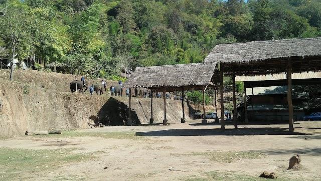 Thai Elephant Home