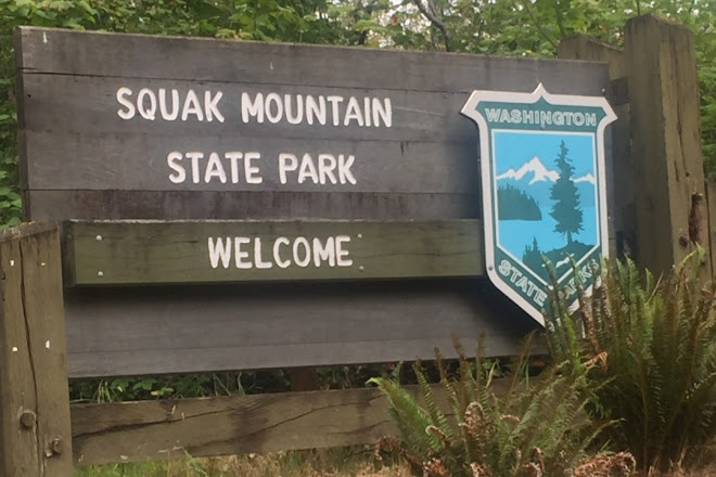 Squak Mountain State Park, Issaquah, United States