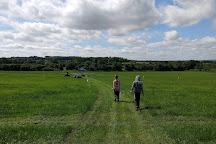 Team Pursuits, Lacock, United Kingdom