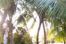 Dive Rasdhoo, Rasdhoo, Maldives