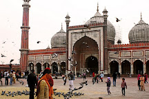 Holiday Tours And Travels, New Delhi, India