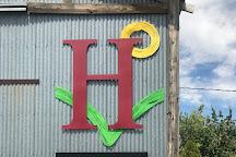 Huston Vineyards, Caldwell, United States