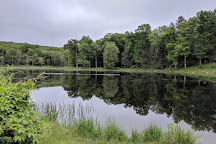 Stokes State Forest, Branchville, United States