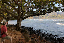 Puu Poa Beach, Princeville, United States