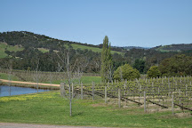 Sutherland Estate, Dixons Creek, Australia