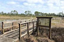 Bon Secour National Wildlife Refuge, Gulf Shores, United States