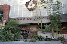 Dallas World Aquarium, Dallas, United States