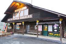Salt and Pepper Shaker Museum, Gatlinburg, United States