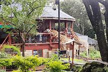 Giraffe Centre, Nairobi, Kenya