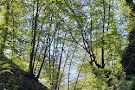 Koseč Gorges