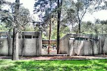 Jardin Botanico del Bosque de Chapultepec, Mexico City, Mexico