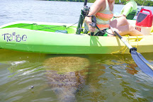 Paddle Naples, Bonita Springs, United States