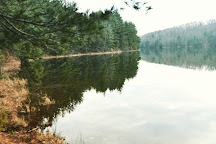 Michaux State Forest, Fayetteville, United States