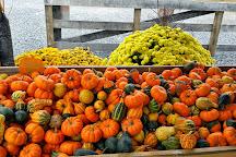 Emery's Berry Farm, New Egypt, United States