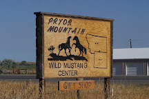 Pryor Mountain Wild Mustang Center, Lovell, United States