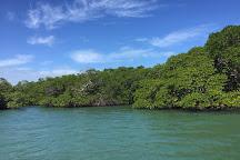 The Estuary of Caye Caulker, Caye Caulker, Belize