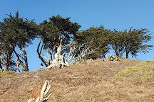 Grand View Park, San Francisco, United States