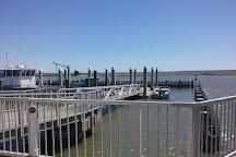 Bulls Island Ferry, Awendaw, United States