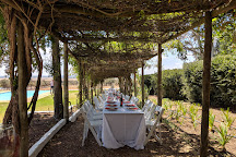 Cloof Wine Estate, Darling, South Africa