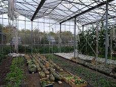 Worton Organic Garden oxford