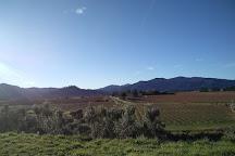 Seresin Estate Limited, Renwick, New Zealand