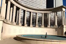 Millennium Monument, Chicago, United States