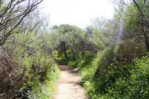 Ghadira Natural Reserve, Mellieha, Malta