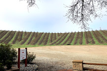 Glunz Family Winery & Cellars, Paso Robles, United States