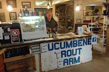 Eucumbene Trout Farm, Cooma, Australia