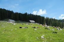 Ojstrica, Bled, Slovenia