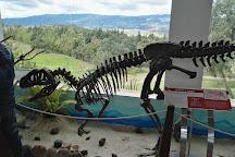 Centro de Investigaciones Paleontologicas - CIP, Villa de Leyva, Colombia