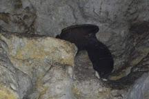 Che Chem Ha Cave, Cayo, Belize