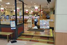 Aeon Akashi Shopping Center, Akashi, Japan
