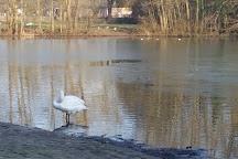 Echternach Lake, Echternach, Luxembourg