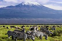 Gracepatt Ecotours Kenya, Nairobi, Kenya