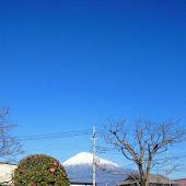 Станция   Tomei Fuji
