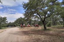 Hollow Tree Ranch, New Braunfels, United States