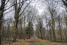 Friston Forest, Seaford, United Kingdom